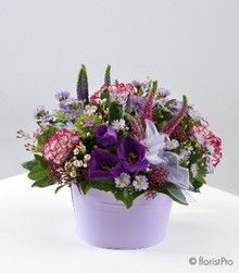 purple, pink, low, table, gift, arrangement, www.thegravesendflorist.co.uk