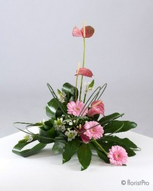 pink modern anthurium gerbera arrangement www.thegravesendflorist.co.uk