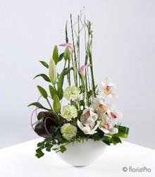 lily, orchid, carnation, calla, modern, arrangement, www.thegravesendflorist.co.uk