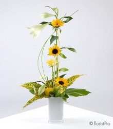 yellow, white, sunflower, rose, lily, modern, designer, arrangement, gift, www.thegravesendflorist.co.uk