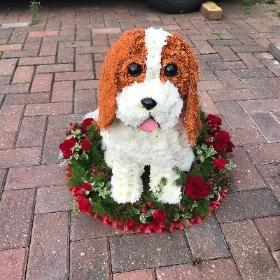 Dog, King Charles, spaniel, sitting, 3D, tribute, wreath, frame, flowers, florist, floral, funeral, sympathy, Gravesend, kent, london